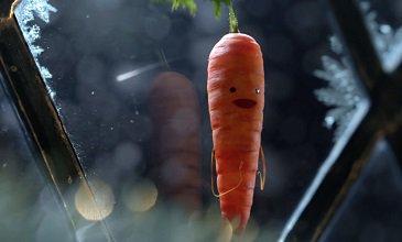 Seasonal Stories: Vegetable Tales With Aldi