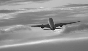 TripAdvisor allows users to submit Airline Reviews